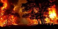 اندلاع عدة حرائق في ولاية بومرداس بالجزائر