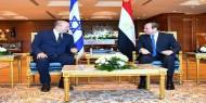 السيسي يؤكد دعمه لحل الدولتين وتحقيق السلام الشامل في الشرق الأوسط